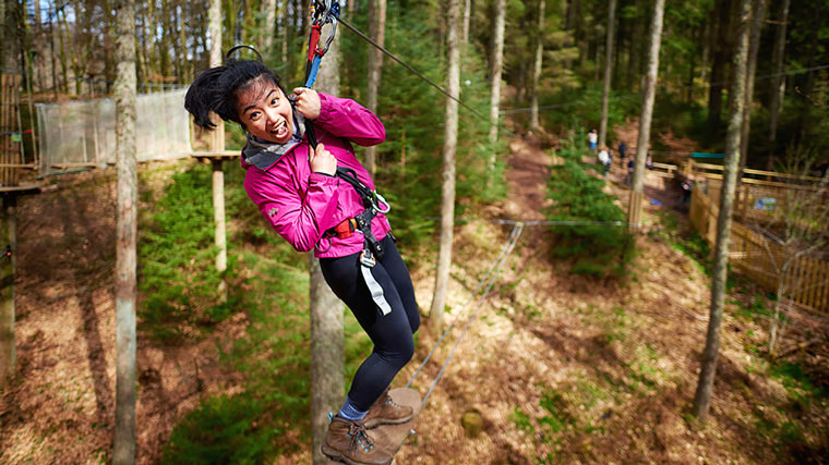 Go Ape at Normanby Hall