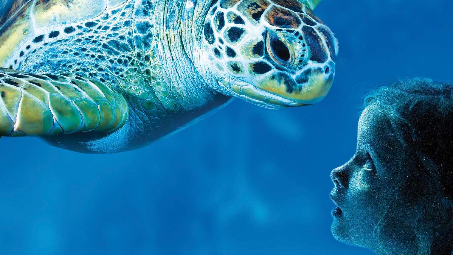 sea life manchester deals